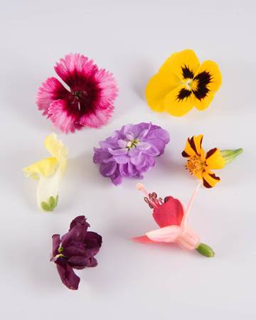 Edible Flowers-Mixed Flowers-Isolated