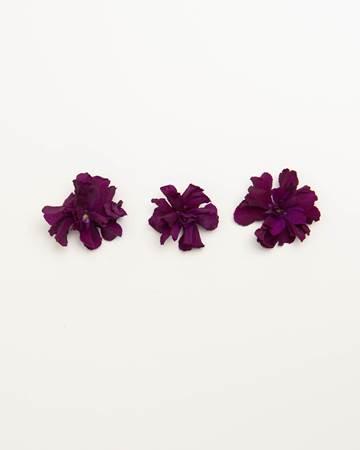 Edible-Flower-Mini-Floret-Plum