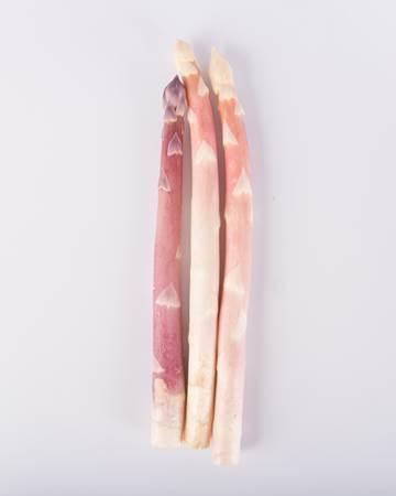 Asparagus-Pink-Blush-Jumbo-Isolated