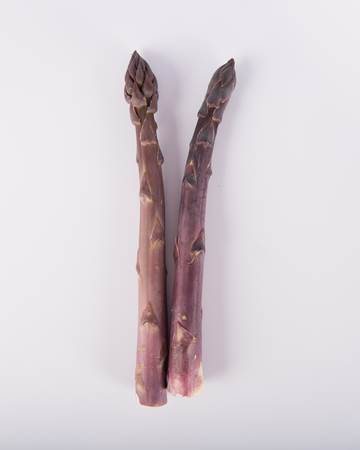 Asparagus-Purple-Colossal-Isolated