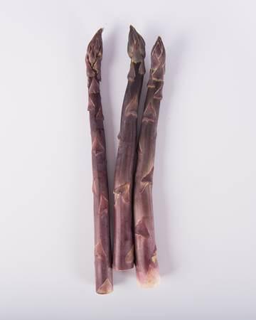 Asparagus-Purple-Jumbo-Isolated