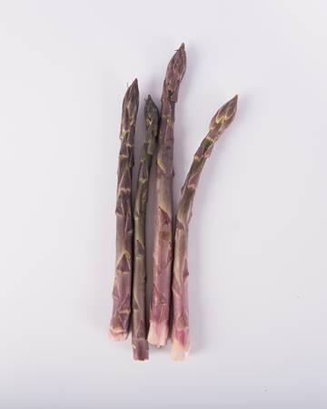 Asparagus-Purple-Standard-Isolated
