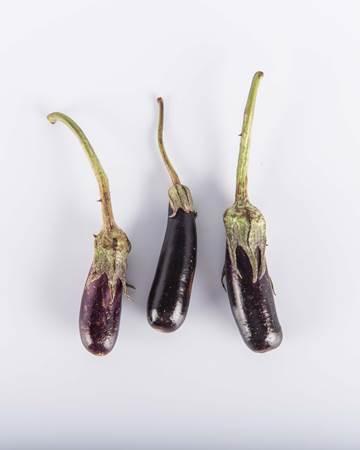 Baby Hansel Eggplant