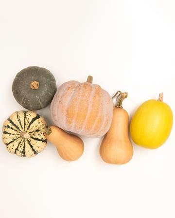 mixed-fall-squash