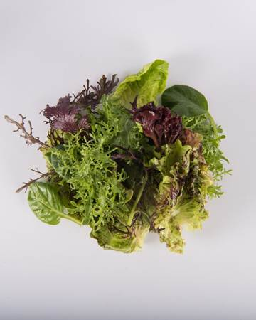 Mesclun-Baby-Isolated