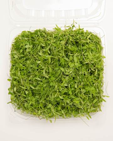 Blend-Micro-Fines-Herbs-Isolated