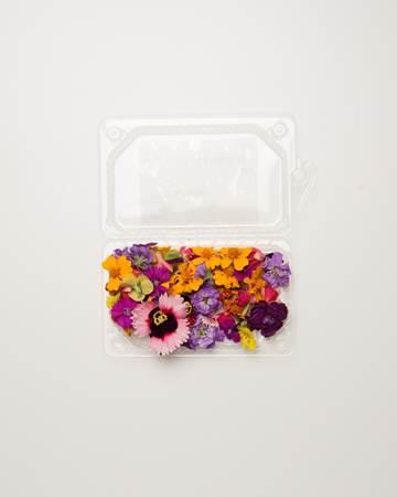 Bestooftheseason_Box_Flowers