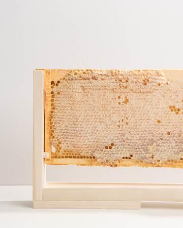 Honey-Whole-Frame