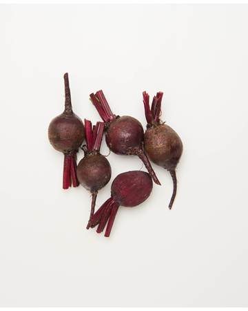 Beets-Bulls-Blood-Baby-1-of-1