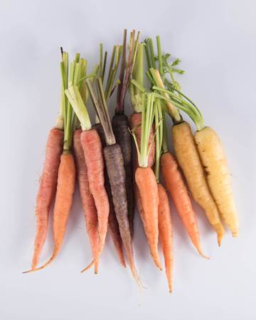 Carrot-Mixed-Baby-Isolated
