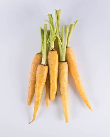Carrot-Yellow-Baby-Isolated