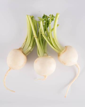 Turnip-White-Baby-Isolated
