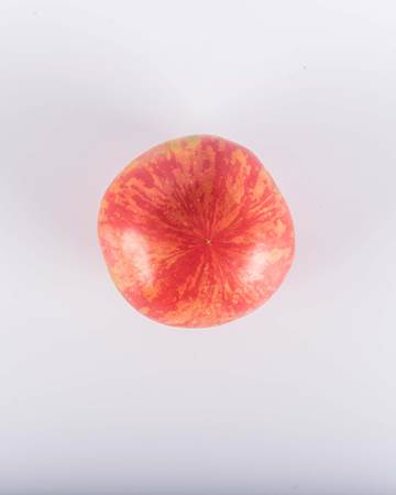 Sweet Carneros Pink Toy Box Tomato