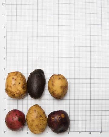 Potato-Mixed-B-Size-Grid-1-of-1