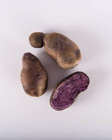 Potato-Purple-Majesty